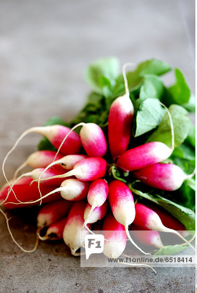 Mandatory Credit: Photo by Martin Lee / Rex Features ( 962250b ) Bunch of Fresh Radish Various - 2009