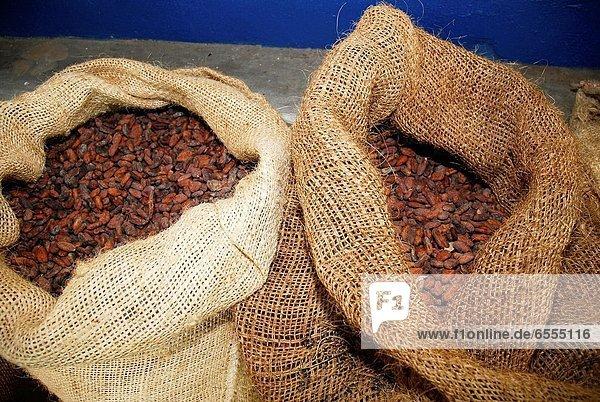 Kakao  heiße Schokolade  Trinkschokolade   Erde  Bohne  Erfolg  Plantage  Venezuela
