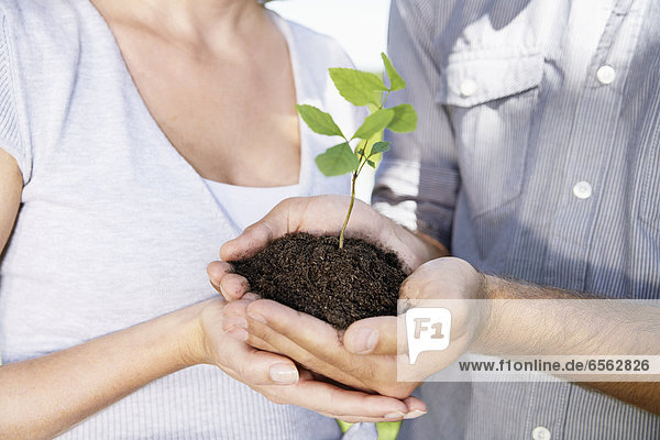 Germany  Cologne  Young couple holding seedling