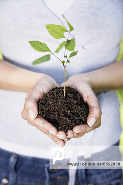 Young woman holding seedling  close up