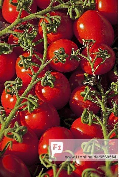 Rote Paprika an einem Marktstand in Cannobio  Italien
