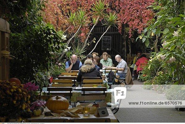 Ein Weingarten in der Theresienstrasse in Rhodt unter Rietburg   SŸdliche Weinstrasse  Pfalz *** Local Caption ***