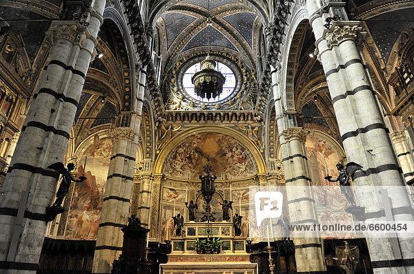 Altar des Doms von Siena  Cattedrale di Santa Maria Assunta  Innenansicht  Hauptkirche der Stadt Siena  Toskana  Italien  Europa