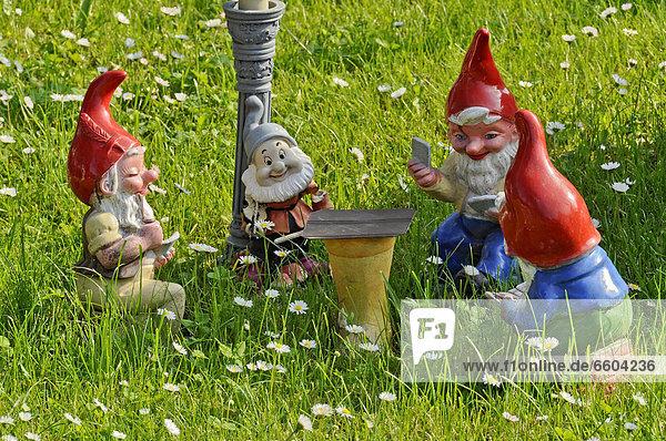 Gartenzwerge beim Kartenspiel im Garten  Büches bei Büdingen  Hessen  Deutschland  Europa  ÖffentlicherGrund