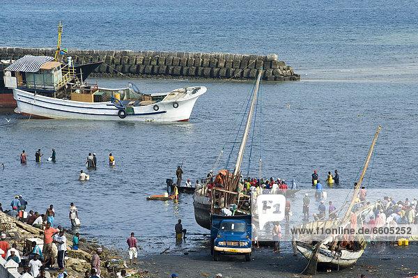Händler kaufen frischen Fisch  in Stone Town  Sansibar  Tansania  Afrika