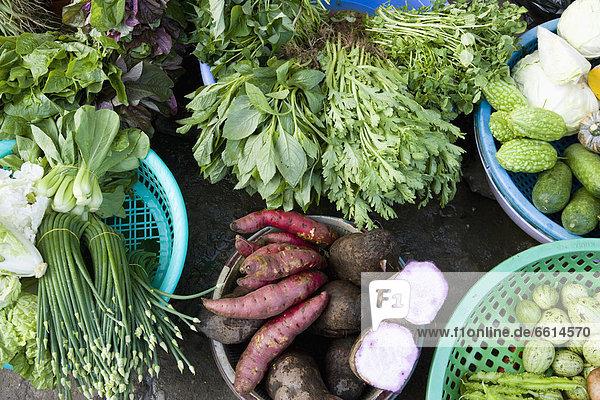 Arzt  Produktion  verkaufen  Markt  Vietnam