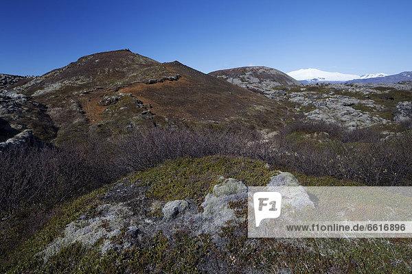 Budaklettur und Snefell  Budir  Snaefellsness Nationalpark  Island  Europa