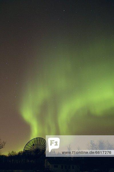 Polarlicht  Alberta  Kanada  Edmonton
