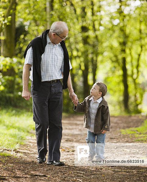 Laubwald  Europäer  gehen  Enkelsohn  Großvater