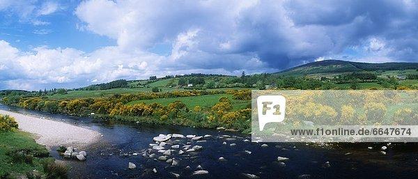 Liffey County Wicklow Irland