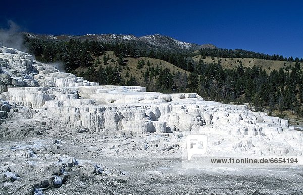 Vereinigte Staaten von Amerika  USA  Yellowstone Nationalpark  Wyoming