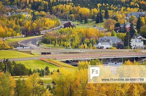 Herbst Alberta Kanada Edmonton