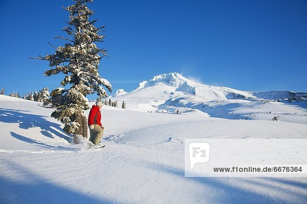 Person Snowshoeing