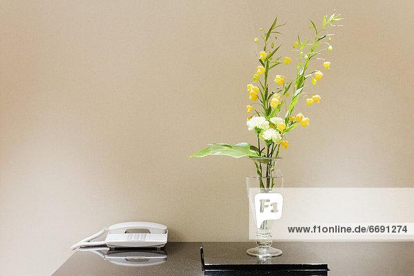 Blume  Telefon  Tisch