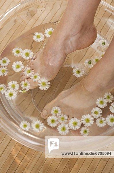 Blume Fußbad