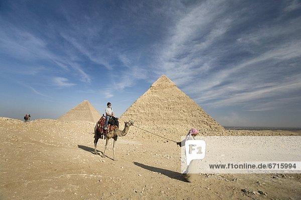 pyramidenförmig  Pyramide  Pyramiden  Führung  Anleitung führen  führt  führend  führen  Passagier  Kamel