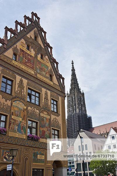 Halle  Münster  Ulm