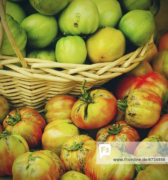 Korb  Tomate  schießen  Studioaufnahme