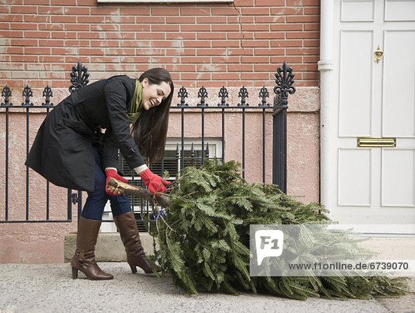 Städtisches Motiv  Städtische Motive  Straßenszene  Straßenszene  Frau  ziehen  Baum  Weg  Weihnachten