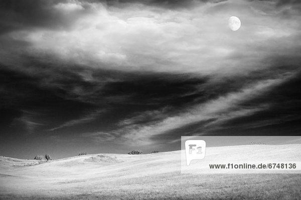 Landschaft  weiß  schwarz  Mondschein