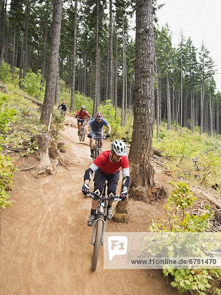 Berg  folgen  fahren  Wald