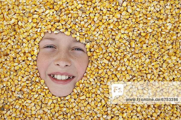 Mais  Zuckermais  Kukuruz  Junge - Person  umgeben  Samen