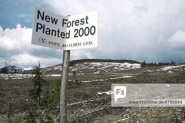 Zeichen  Wald  britisch  neu  Signal