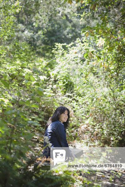 Wald  jung