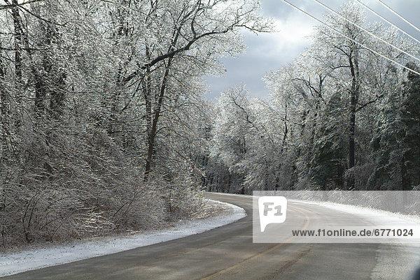 Biegung  Biegungen  Kurve  Kurven  gewölbt  Bogen  gebogen  Baum  Sturm  Fernverkehrsstraße  Eis