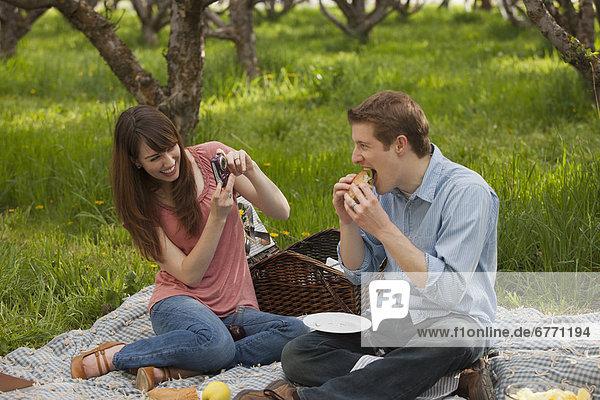 Vereinigte Staaten von Amerika  USA  Picknick  jung  Obstgarten  Utah