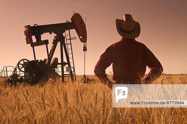 Mann  über  Start  ernten  Hintergrund  Feld  Weizen  Ölpumpe  Manitoba  Öl