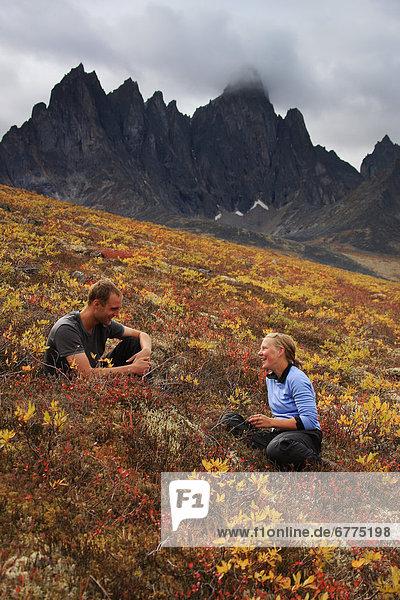 sitzend  Herbst  Wiese  jung  Tombstone Territorial Park  Yukon