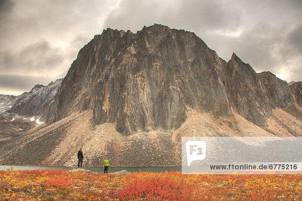 See  wandern  Herbst  Tombstone Territorial Park  Yukon