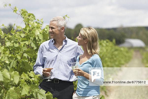 Fröhlichkeit , Wein , Ontario , Weinberg