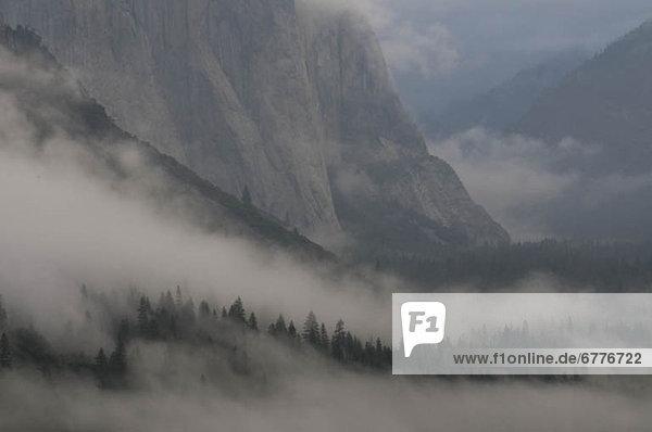 Vereinigte Staaten von Amerika  USA  Yosemite Nationalpark  Kalifornien