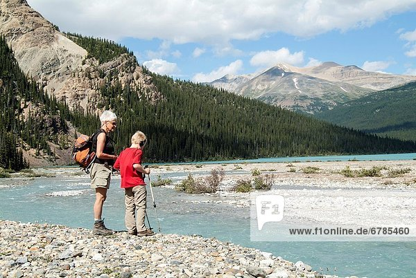 A grandmother and her grandson look at a stream south of Bow Lake in Banff National Park  Alberta  Canada