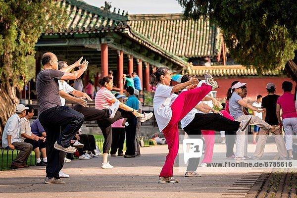 Mensch  Menschen  Sommer  Morgen  üben  chinesisch  Kunst  früh  Peking  Hauptstadt  Himmel  Kampfsportler  China