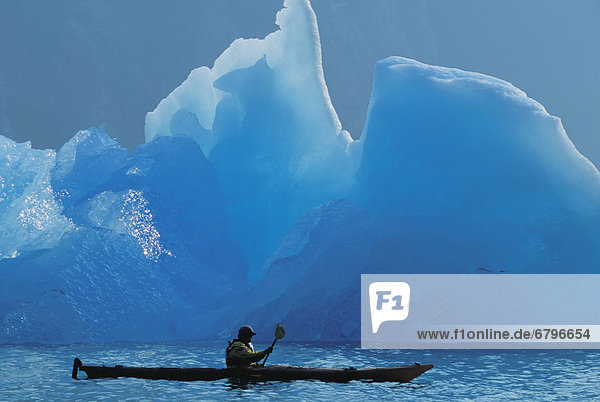 Alaska  Tongass National Forest  Tracy Arms Terror Wilderness  Kayaker passing through icebergs.