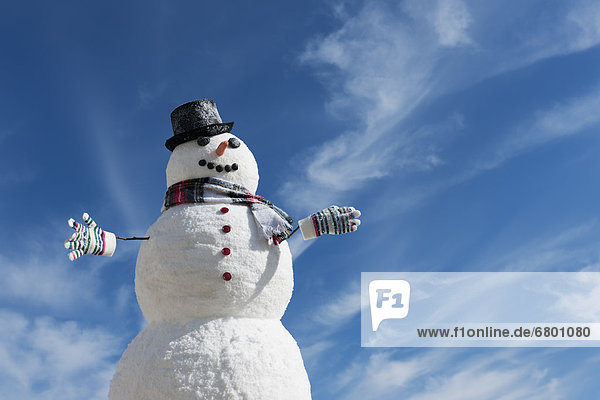 Snowman under blue sky