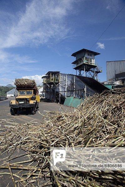 Spazierstock  Stock  Mühle  beladen  Lastkraftwagen  Zucker  Philippinen  bringen  roh