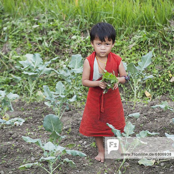 Bhutanese Child In Garden  Punakha District Bhutan