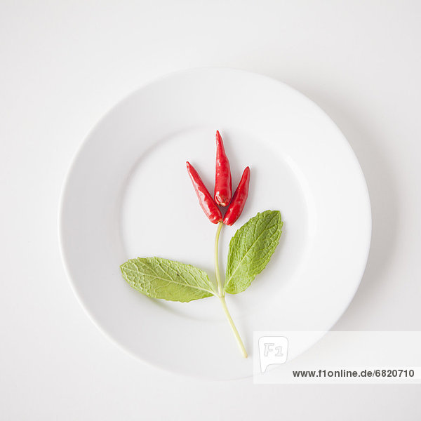 Studioaufnahme  Lebensmittel  Blume  Produktion  Teller
