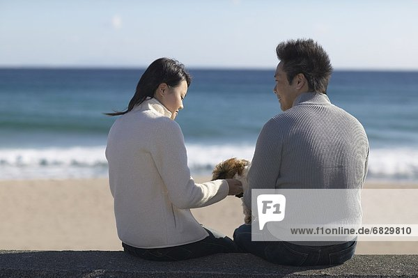 Couple with dog sitting at beach