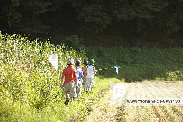 Boys holding butterfly nets walking in field