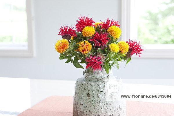 Blume  Bündel  Blumenvase