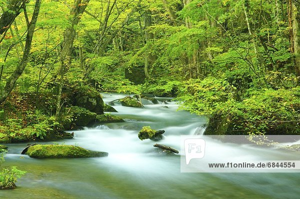 fließen  Hachimantai  Japan  Oirase