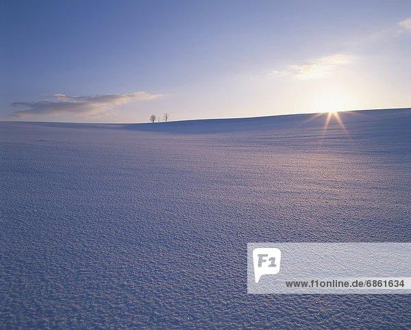 leer  Tischset  über  Schnee  Feld  Biei  Hokkaido  Hokkaido  Japan  Sonne