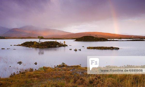 Europa  Großbritannien  Himmel  über  Sturm  Herbst  Highlands  Moor  Regenbogen  Schottland