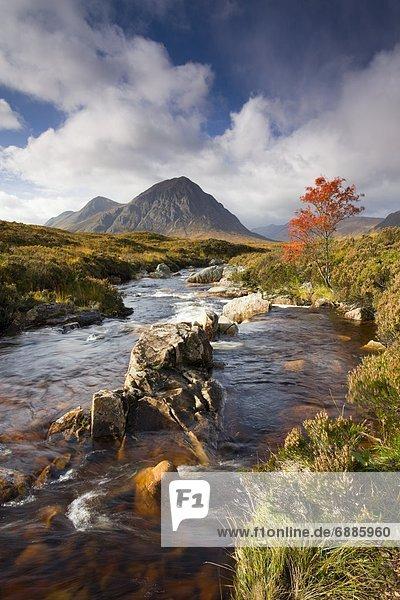 Europa  Großbritannien  rennen  Herbst  Highlands  Moor  Schottland