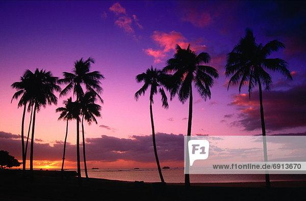 Vereinigte Staaten von Amerika  USA  Hawaii  Honolulu